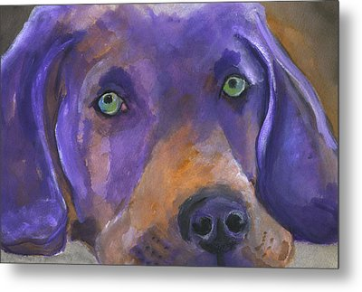 Weimaraner Dog Art Metal Print