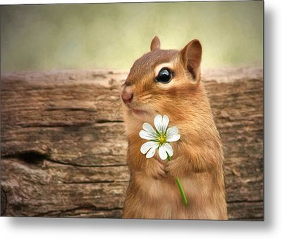 Welcome Spring Metal Print by Lori Deiter