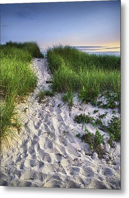Wellfleet Beach Path Metal Print