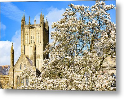 Wells Cathedral And Spring Blossom Metal Print