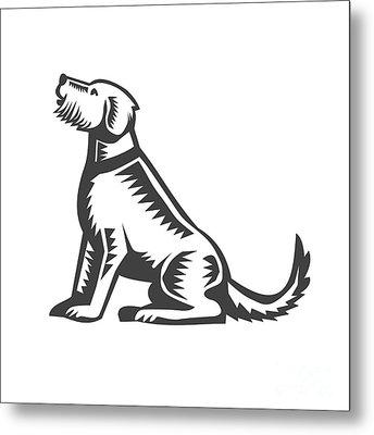 Welsh Terrier Sitting Woodcut  Metal Print by Aloysius Patrimonio