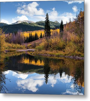 Metal Print featuring the photograph West Elk Range Reflection by The Forests Edge Photography - Diane Sandoval