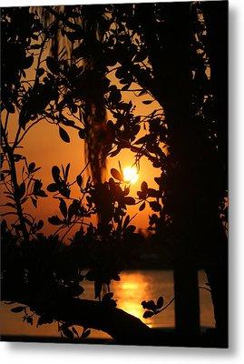 Metal Print featuring the photograph West Palm Beach Sunrise by Diane Merkle