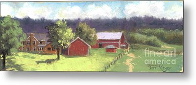 West View Of The Meyer Ranch Metal Print by Terri  Meyer