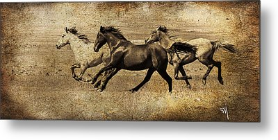 Western Flair Metal Print