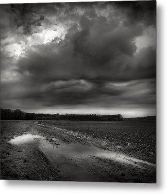 Wet Spring Metal Print by Jaromir Hron