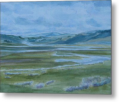 Wet Summer In Big Sky Country Metal Print