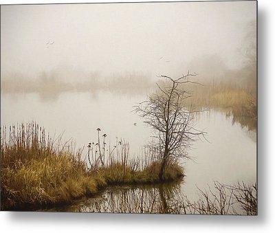 Metal Print featuring the painting Wetland Wonders Of Winter by Jordan Blackstone