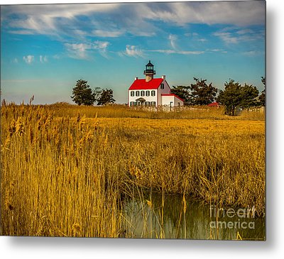 Metal Print featuring the photograph Wetlands At East Point Light by Nick Zelinsky