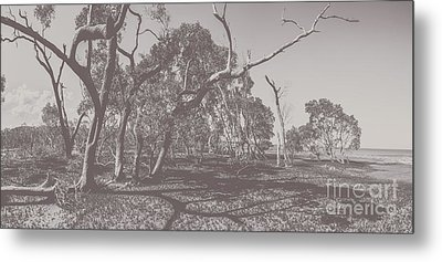 Wetlands Of Old Metal Print by Jorgo Photography - Wall Art Gallery