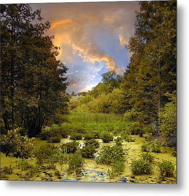 Wetlands Sunset Metal Print