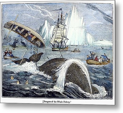 Whaling, 1833 Metal Print