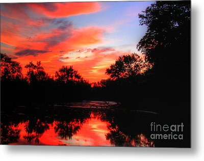 What A Morning 2 Metal Print by Robert Pearson