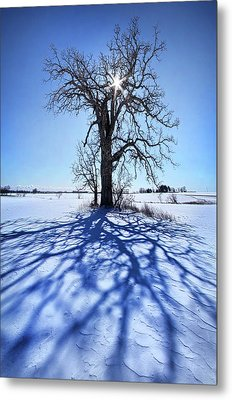 Metal Print featuring the photograph What I Am, What I Was, What I Will Be by Phil Koch