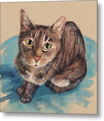 What's Up? Metal Print by Tracie Thompson