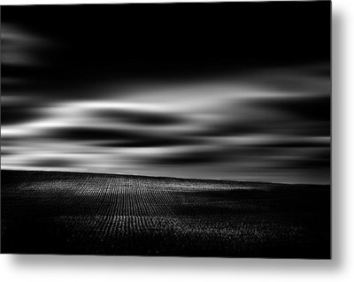 Metal Print featuring the photograph Wheat Abstract by Dan Jurak