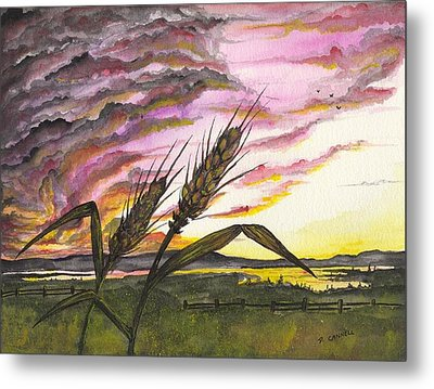Metal Print featuring the painting Wheat Field by Darren Cannell