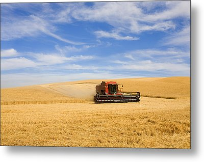 Wheat Harvest Metal Print by Mike  Dawson