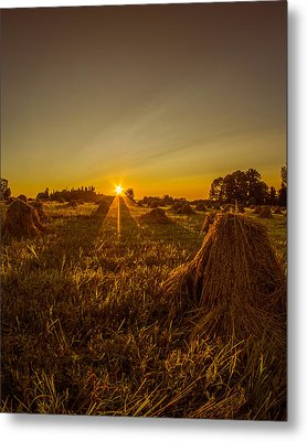 Metal Print featuring the photograph Wheat Shocks by Chris Bordeleau