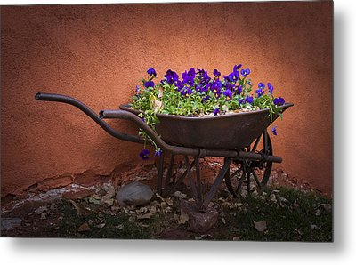 Wheelbarrow Full Of Pansies Metal Print by Christina Lihani
