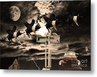 When Pigs Fly Metal Print by Wingsdomain Art and Photography