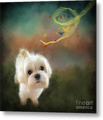 When Puppies Get Confused Metal Print by Lois Bryan