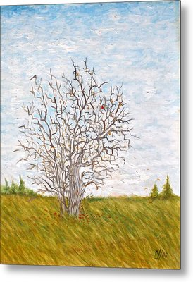 When The Apples Are Gone Metal Print by Norman F Jackson