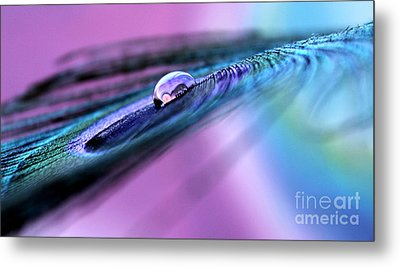 When The Time Is Right Metal Print