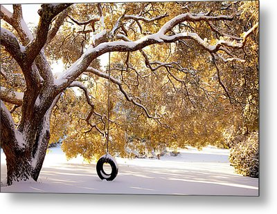When Winter Blooms Metal Print by Karen Wiles