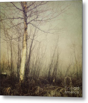 When You Find The One Metal Print by Priska Wettstein