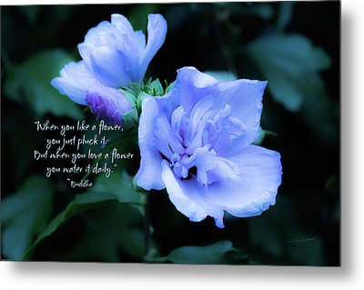 When You Love A Flower Metal Print by Mick Anderson