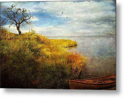 Metal Print featuring the photograph Where I Came To Rest... by John Rivera