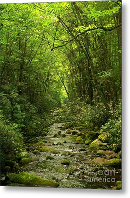 Where It Leads Metal Print by Southern Photo
