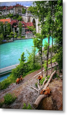 Where's Goldilocks? Bern Switzerland  Metal Print