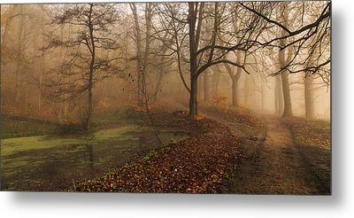 Which Path II Metal Print by Leif L?ndal
