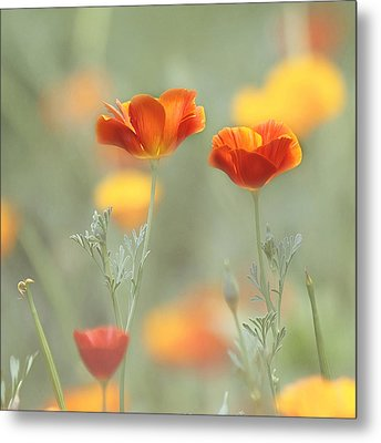 Whimsical Summer Metal Print by Kim Hojnacki