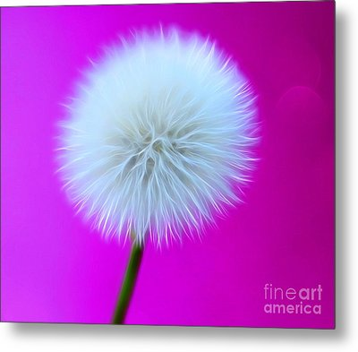 Whimsy Wishes Metal Print