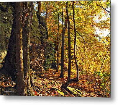 Metal Print featuring the photograph Whipp's Ledges In Autumn by Joan  Minchak