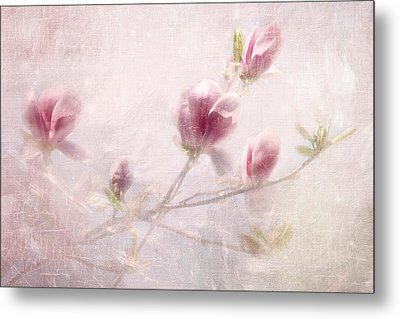 Whisper Of Spring Metal Print by Annie Snel