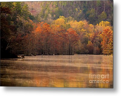 Metal Print featuring the photograph Whispering Mist by Iris Greenwell