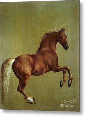 Whistlejacket Metal Print by George Stubbs