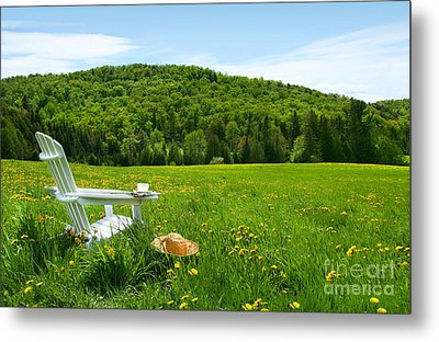 White Adirondack Chair In A Field Of Tall Grass Metal Print by Sandra Cunningham