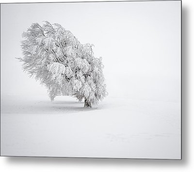 White Metal Print by Andreas Wonisch