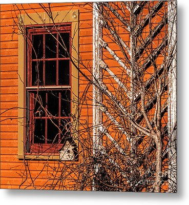 White Bird House Metal Print