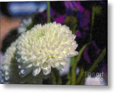 Metal Print featuring the photograph White Chrysanthemum Flower by David Zanzinger