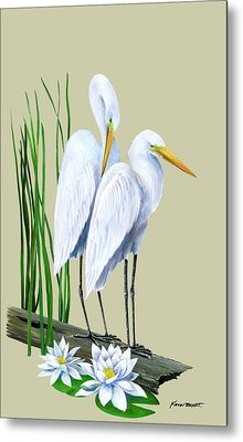 White Egrets And White Lillies Metal Print by Kevin Brant