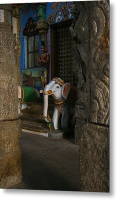 white Elephant Metal Print by Deepak Pawar