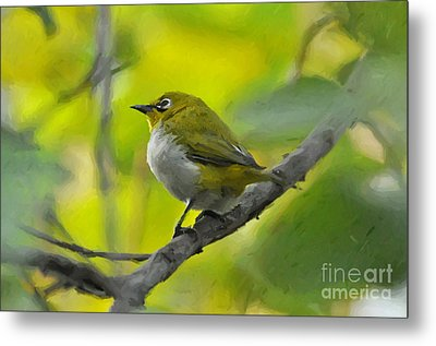 White Eye 1 Metal Print