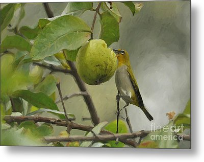 White Eye 2 Metal Print