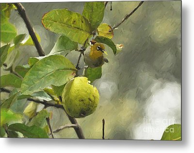 White Eye 3 Metal Print